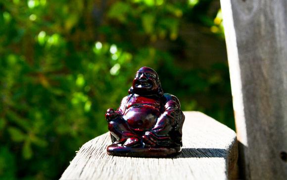 Fortune Buddha