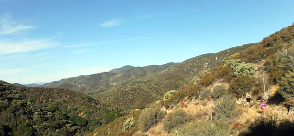 Pacific Crest Trail at Leona Valley Trail Race