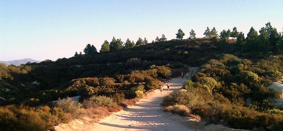 Leona Valley Trail Race